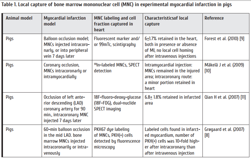 Table_1_Local_capture_of_bone_marrow_mononuclear_cell_MNC_in_experimental_myocardial_infarction_in_pigs.png